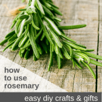 How to Use Rosemary